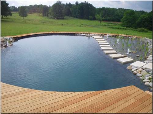 bassins de baignade piscine biologique, créer création de piscines ...