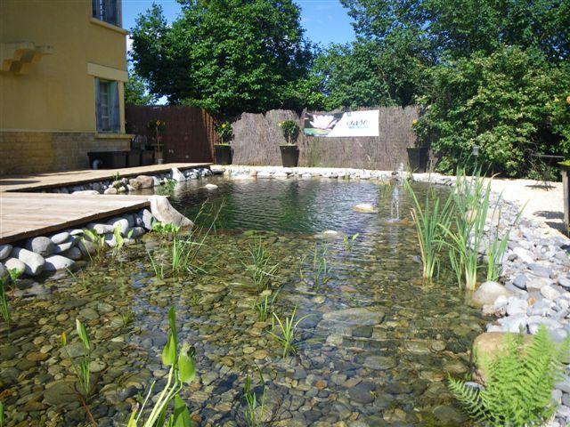 cr ation bassin aquatique jardin d 39 eau plantes aquatiques piscines biologiques cr er bassins. Black Bedroom Furniture Sets. Home Design Ideas